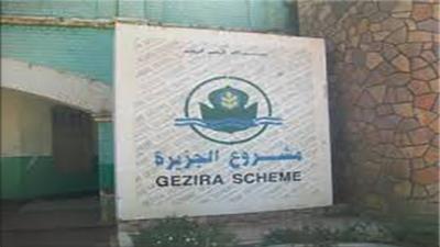 شركات وطنية لم تدعم نفرة مشروع الجزيرة والمناقل رغم الوعود