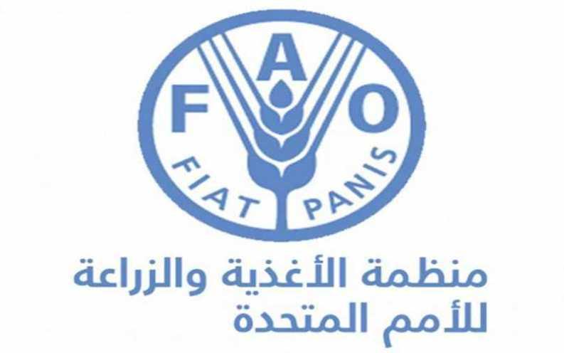"""السودان ينضم لمبادرة """"يداً بيدٍ"""" التي تتبناها منظمة الأغذية والزراعة"""