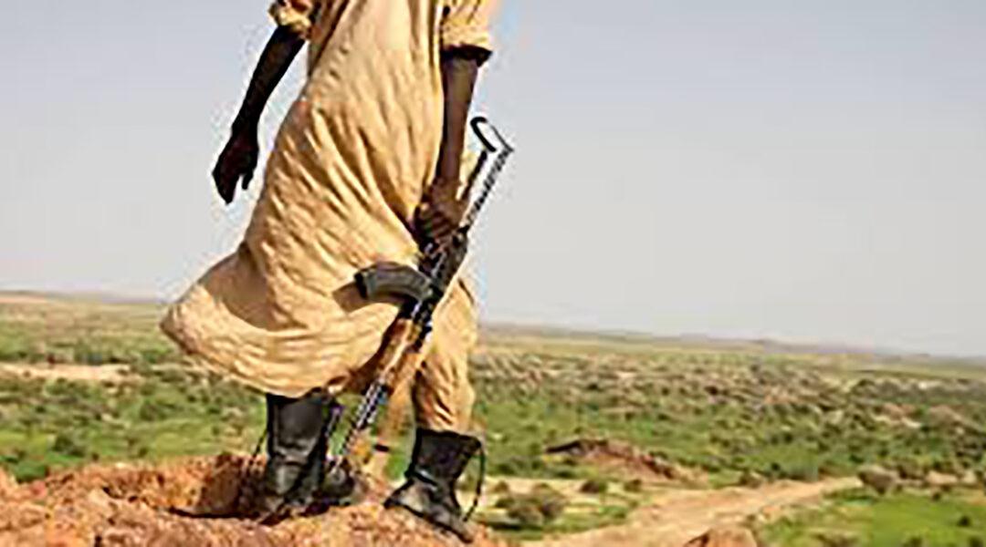 القبض على جناة ارتكبوا جريمة قتل ونهب بجنوب دارفور