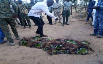 مليشيا مسلحة تقتل مواطن داخل مزرعته بشمال دار فور