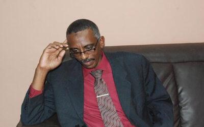وجدي صالح : إكمال تعيين الولاة يسهم في تحقيق السلام