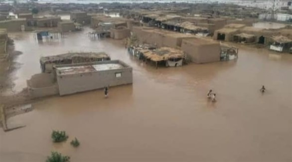 الري: 330 مليون جنيها لتأهيل سد بوط بولاية النيل الأزرق