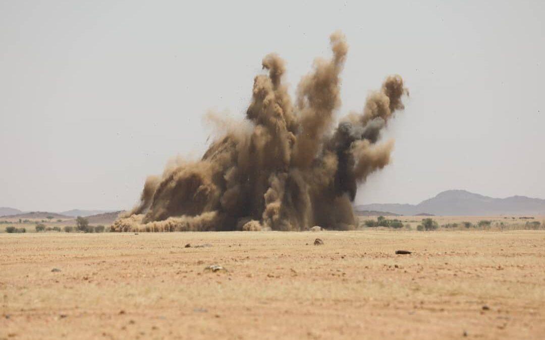 إبادة 300 ألف قطعة سلاح غير مقننة بولاية نهر النيل