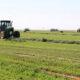 الزراعة : إتجاه لإستهداف زراعة
