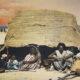 الإقليم المنسي: القضايا الاستراتيجيةِ في شرق السودان…