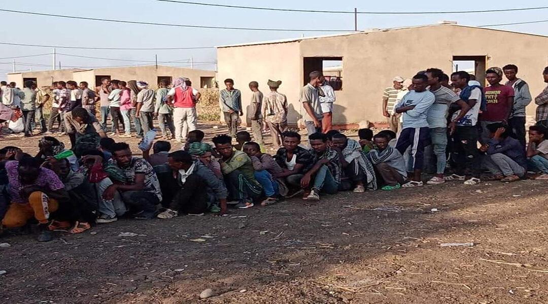 مواطنون ولاجئون يعيشون أوضاعا مأساوية بالهشابة شرق السودان
