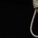 العفو الدولية: تزايد تنفيذ الإعدام في مصر في الفترة الماضية