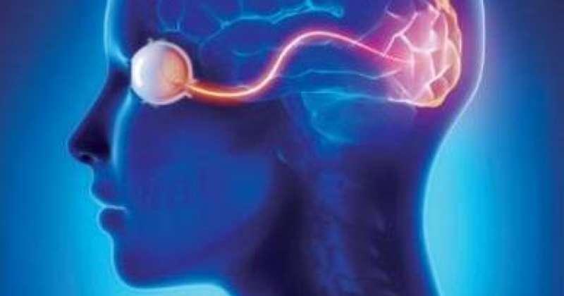 بغرسات دماغية .. إنجاز علمي جديد من شأنه إعادة البصر للمكفوفين