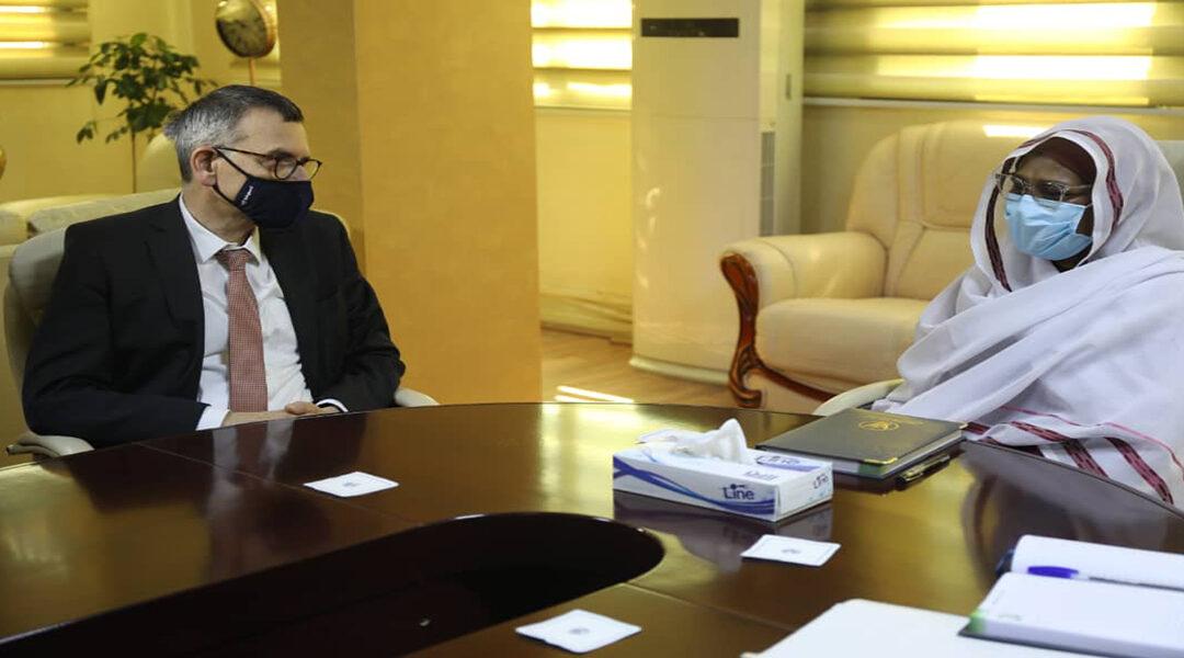 """وزيرة الخارجية تلتقى برئيس بعثة الامم المتحدة """"يونيتاميس"""""""