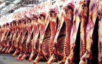 الأردن: إعتماد مسلخين جديدين للحوم فى السودان