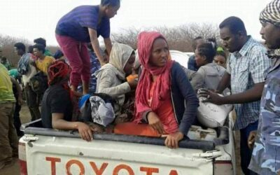 الفرقة الثانية مشاة بالقضارف تحبط تهريب  إثيوبيات للخرطوم