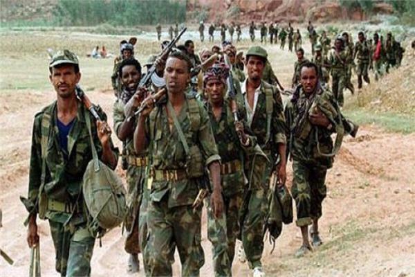 جنوب دارفور تدفع تعزيزات عسكرية لمناطق زراعة المخدرات بالردوم