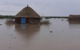 مياه أمطار من وادي البار تغمر أجزاء واسعة من محلية الفاو بولاية القضارف