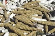 إعتداءات على شرطة مكافحة المخدرات بالريف الشمالي لمحلية الروصيرص